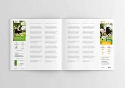 SANO – Anuncios Revista Infortambo