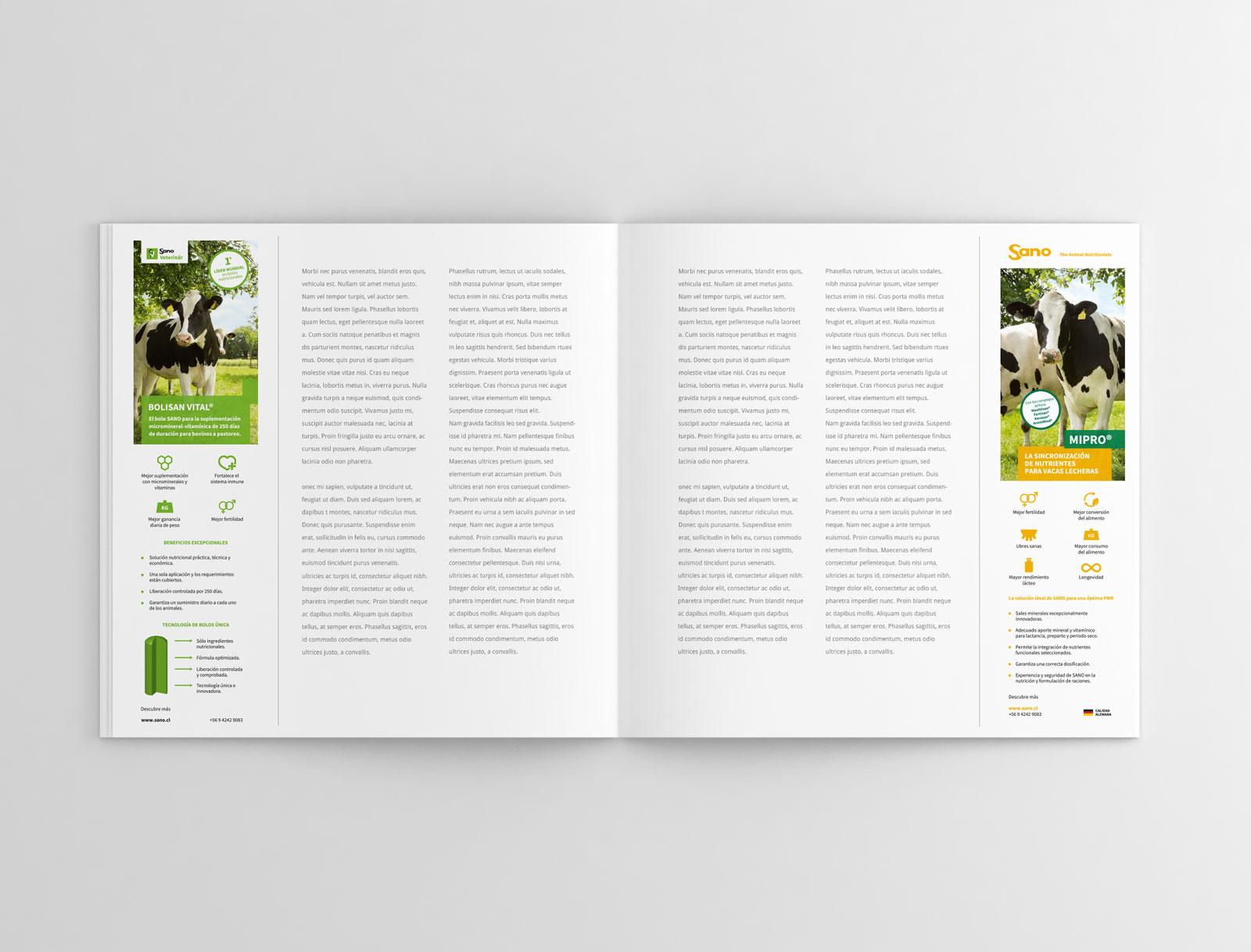 SANO - Anuncios Revista Infortambo - 1