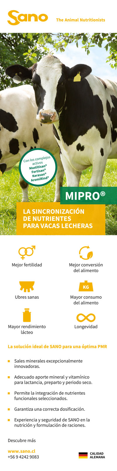 SANO - Anuncios Revista Infortambo - 3