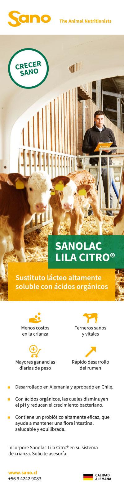 SANO - Anuncios Revista Infortambo - 5