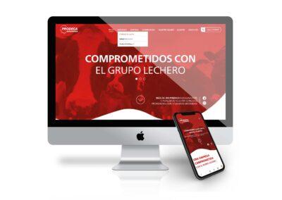 PRODECA – Sitio Web